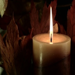 Autumn Candle and Leaves Stock Footage