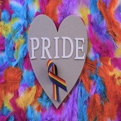 Rainbow Gay Pride feathers on a white background. Stock Footage