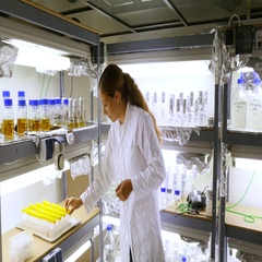 Biologist in climate room for different water samples. Stock Footage