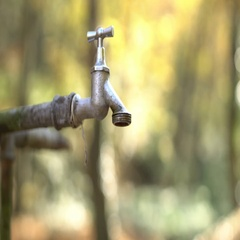Leaking faucet shot in front of a beautiful bokeh autumn forest background. Stock Footage