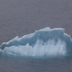 Typical growler - low iceberg Stock Footage