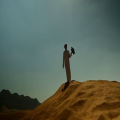 Silhouette of Arab man with falcon perching on his hand at desert. Stock Footage