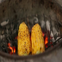 Corns being grilled. Stock Footage