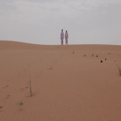 Father and son walking down the desert dunes. Stock Footage