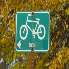 Green bicycle sign indicating bike trail. Don Valley, Toronto, Canada. Stock Footage