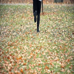 Jogger running in the autumn park Stock Footage