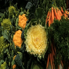 Panning display of different variety of winter vegetables at a food market Stock Footage
