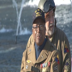 Black WWII veteran celebrates Veterans Day in D.C. Stock Footage