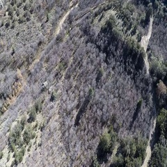 Aerial-Flying over winding mountain dirt road long shadows afternoon Stock Footage