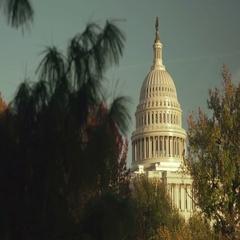 US Capital Dome in Washington DC Stock Footage