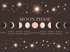 The phases of the moon. The whole cycle from new moon to full. Vector Piirros