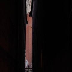 Tilt shot of Torre del Mangia tower between palaces, Siena, Italy Stock Footage