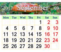 Calendar for October 2017 Stock Illustration