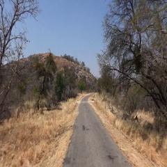 Game Drive in Matobos NP (Zimbabwe) as detailed 4K UHD footage Stock Footage