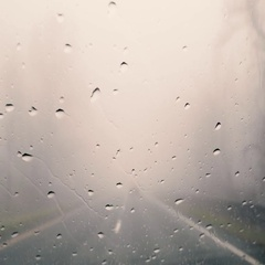 Car Driving in Fog Weather POV 4K Stock Video Stock Footage