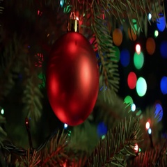Christmas and new year decoration. Christmas tree decorations red ball with Stock Footage