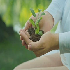 Young woman hands and ecology symbols, Stock Footage