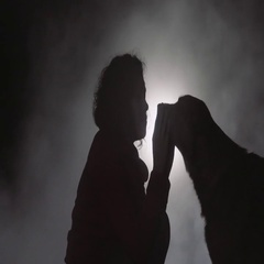 Silhouette of woman caressing dog Stock Footage