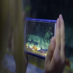 Little Girl Holds Her Smartphone Up To Aquarium Tank And Takes Video Of Sharks Stock Footage