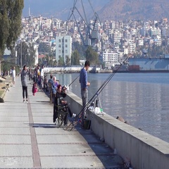 Fishing people at the sea front Stock Footage