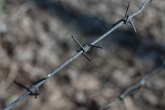 Piece of a barbed wire - small depth of sharpness Stock Photos