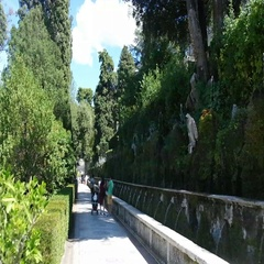 Villa d'Este Tivoli, Italy. Alley fountains in the center Stock Footage