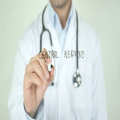 Central nervous system, Doctor Writing on Transparent Screen Stock Footage