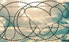 Barbwire heart frames flock of birds in cloudscape Stock Photos