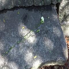 Samuel Wardwell's seat marker, Salem Witch Trials Memorial Park, Salem, MA. Stock Footage