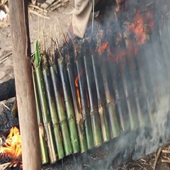 Cambodia Khmer Krolan bamboo sticky rice cooking fire Stock Footage