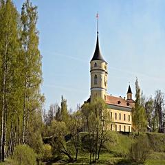 Bip castle in Pavlovsk, St. Petersburg, Russia Stock Footage