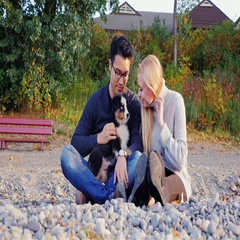 Multiethnic couple relaxing on the beach with his beloved dog. They sit and play Stock Footage
