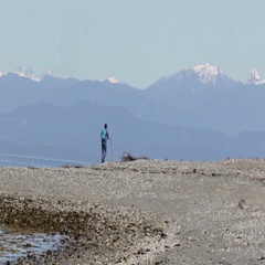 Solitary man on the beach Vancouver Canada Stock Footage