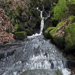 Small waterfall breaks out into wide stream of smooth flowing water Stock Footage