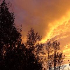 Bright orange sky at sunset Stock Footage