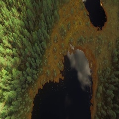 Aerial tilt shot of small bog lakes with sky mirroring from the water Stock Footage