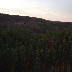 St Croix Valley Fall River Looking Toward Sunrise Stock Footage