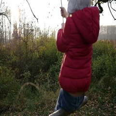 Little kid girl sway on hanging from a tree suspended rope swing in autumn park Stock Footage