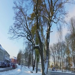 Walk along the city covered with snow. Stock Footage