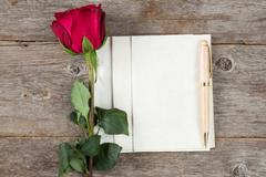 Old rose and blank paper sheets Stock Photos