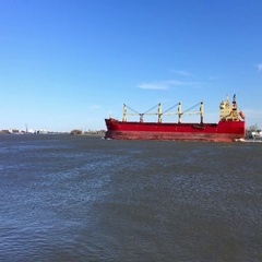 Cargo ship in Mississippi river, New Orleans Stock Footage