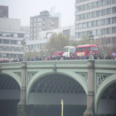 English rain: Westminster Bridge in the rain Stock Footage