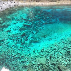 Colorful pond  at Jiuzhaigou National Park  in Sichuan,China Stock Footage