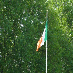 An Irish flag waving on the tall pole Stock Footage