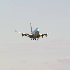 Korean Air Cargo airplane 747 jumbojet landing on runway ambient audio Stock Footage