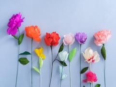 Growing paper flowers Stock Footage