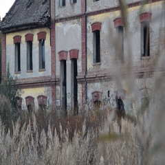 People passing by abandoned building Stock Footage