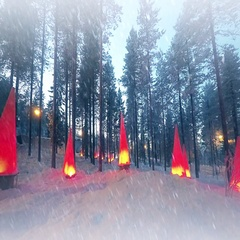 Winter scene with flashlights and snow Stock Footage