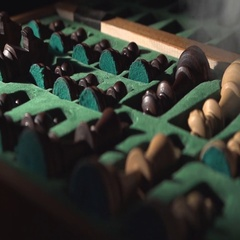 Chess pieces in a case Stock Footage