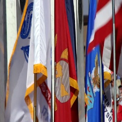 American and all military branch flags waiving Stock Footage